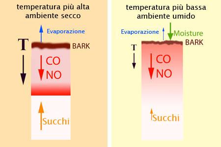 effetto dell'umidità sullo smoke ring