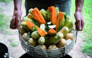 Il cesto del fornetto carico di verdura
